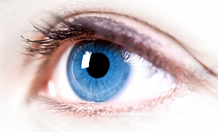 Exercises to improve your Eye Vision, Eye Exercise for Better vision-PakeezaAnchal.com