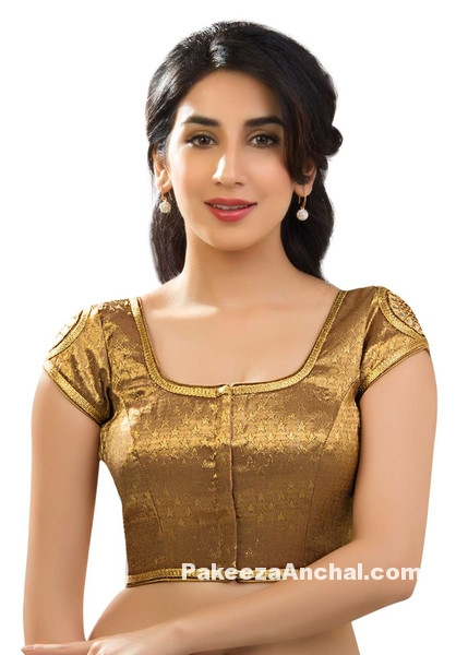 Latest Gold Sequin Saree Blouse Designs & patterns for Indian Women PakeezaAnchal.com