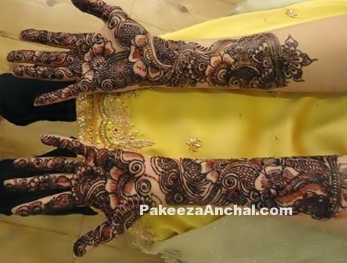 Mehendi Designs for Bride, Top Bridal Mehendi Design Patterns of Brides-4-PakeezaAnchal.com