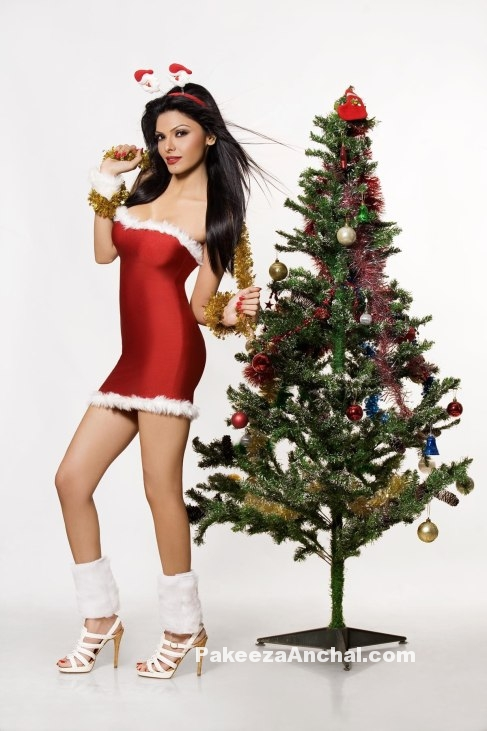 Sherlyn Chopra in Red Snatan Skirt as Santa Claus Merry Christmas 2015-PakeezaAnchal.com